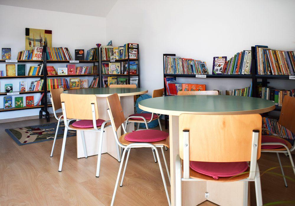 scoala-babel-biblioteca-2-site